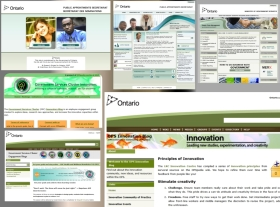 Website Management of Internet, Internal, and PortalWebsites