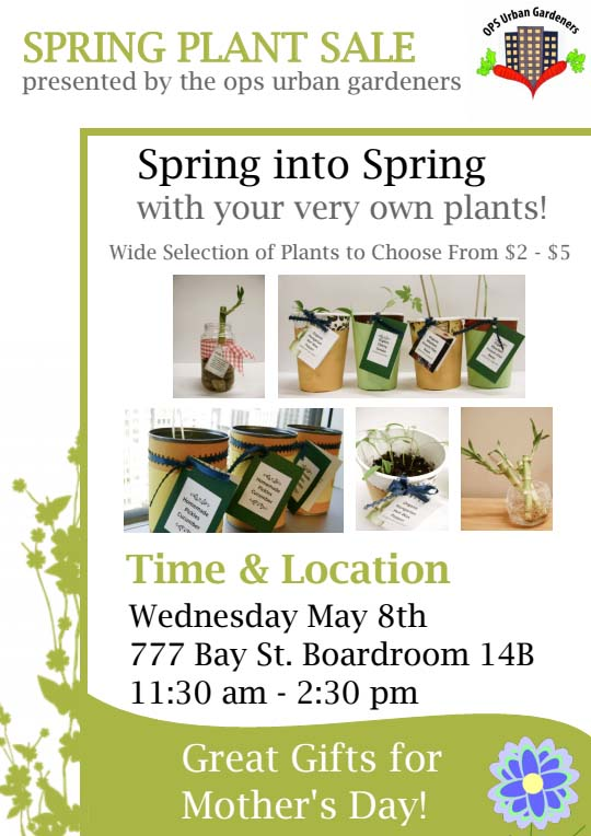 "Graphc elements: plants in cups and bamboo in glass cup. Spring Plant Sale ""Spring into Spring with your very own plants"""